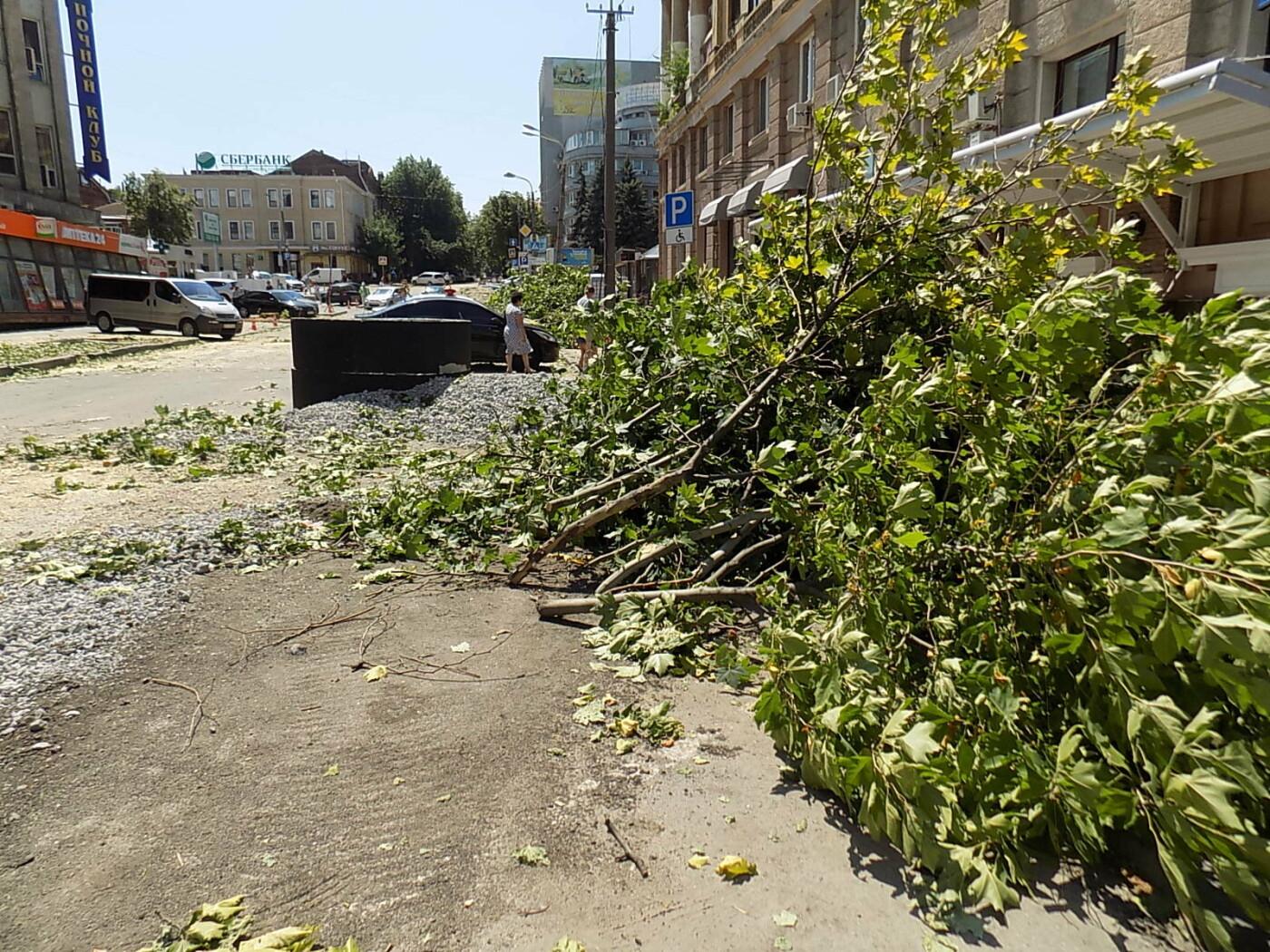 В Днепре провели «похороны» деревьев с Короленко: последние деревья срубили, пока город спал, - ФОТО, фото-1