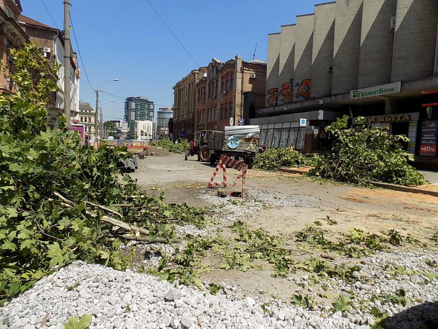 В Днепре провели «похороны» деревьев с Короленко: последние деревья срубили, пока город спал, - ФОТО, фото-3