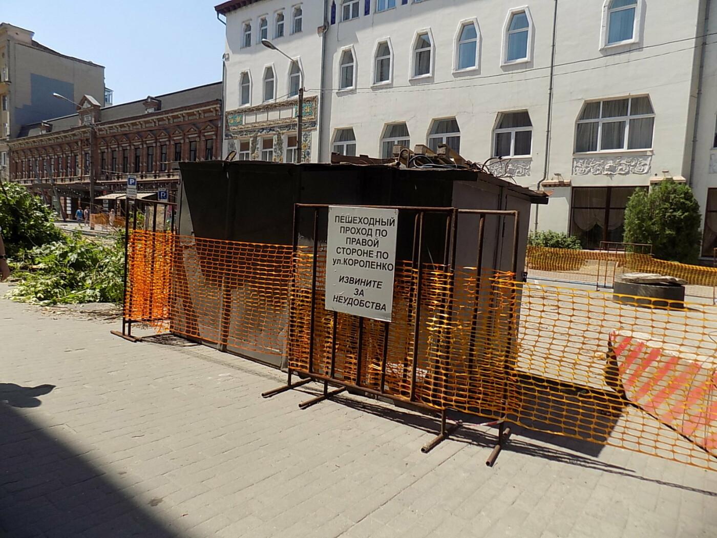 В Днепре провели «похороны» деревьев с Короленко: последние деревья срубили, пока город спал, - ФОТО, фото-6
