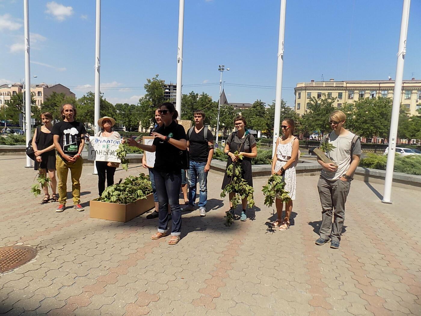 В Днепре провели «похороны» деревьев с Короленко: последние деревья срубили, пока город спал, - ФОТО, фото-17