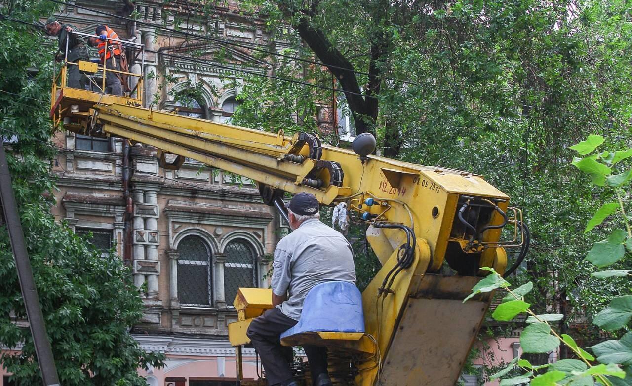 В центре Днепра продолжают убирать аварийные деревья, - ФОТО, фото-6