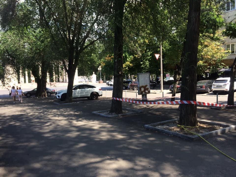 В Днепре ремонтируют улицу Яворницкого, ведущую к парку Шевченка, - ФОТО, фото-7