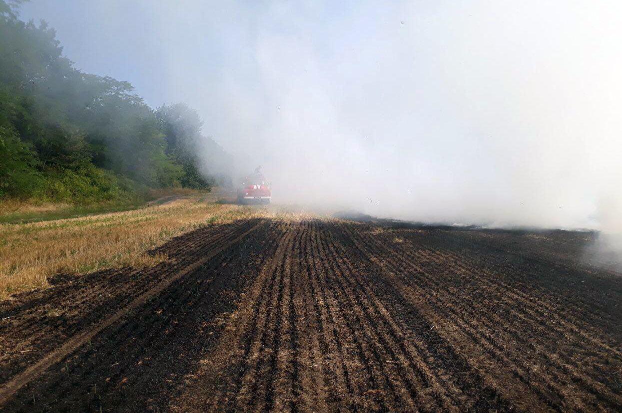 На Днепропетровщине борются с пожарами в полях, - ФОТО, фото-1