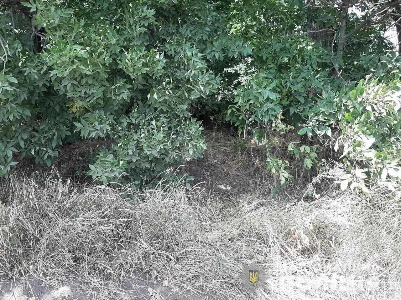 Под Днепром пропавшую 19-летнюю девушку нашли мертвой, - ФОТО, фото-2