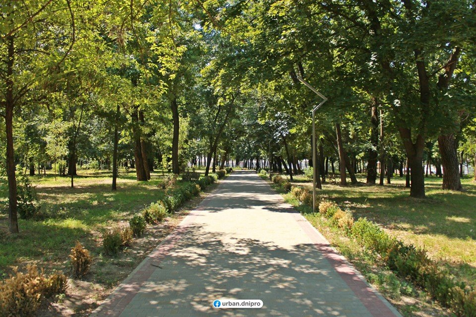 В Днепре бывший парк Ленина перевоплощается в Молодежный: как это выглядит, - ФОТО, фото-16