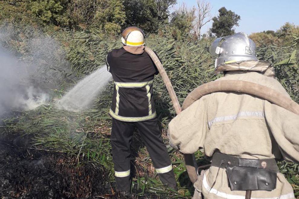 В Днепропетровской области огонь уничтожил почти 5 гектаров сухой травы, - ФОТО, фото-2