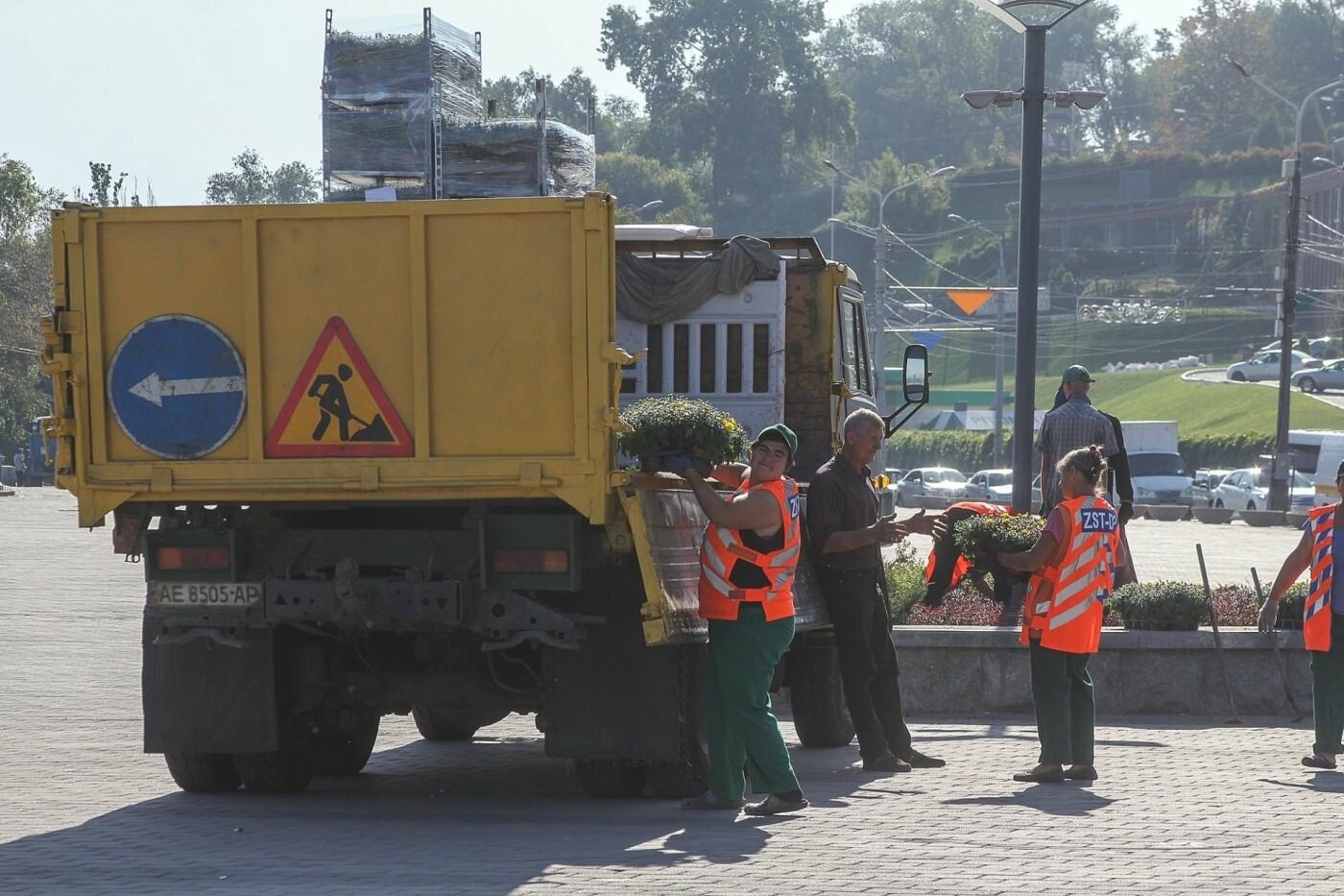 В День города в Днепре появятся тысячи клумб хризантем, - ФОТО, фото-4