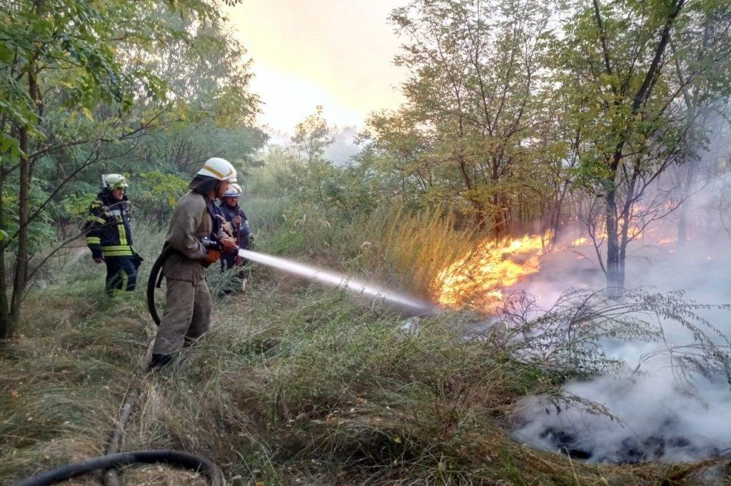 На Днепропетровщине продолжает гореть лес, - ФОТО, ВИДЕО, фото-4