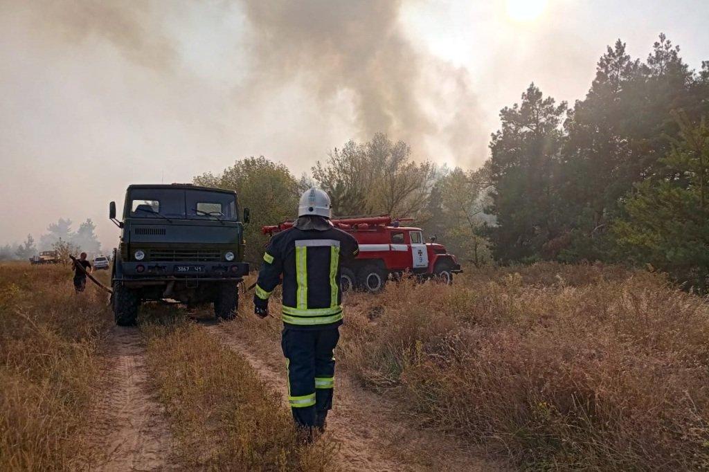 На Днепропетровщине продолжает гореть лес, - ФОТО, ВИДЕО, фото-5