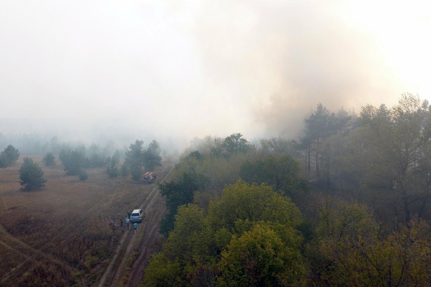 На Днепропетровщине продолжает гореть лес, - ФОТО, ВИДЕО, фото-8