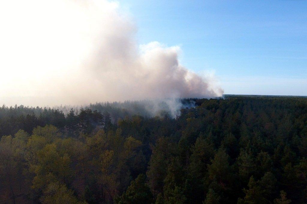 На Днепропетровщине продолжает гореть лес, - ФОТО, ВИДЕО, фото-7