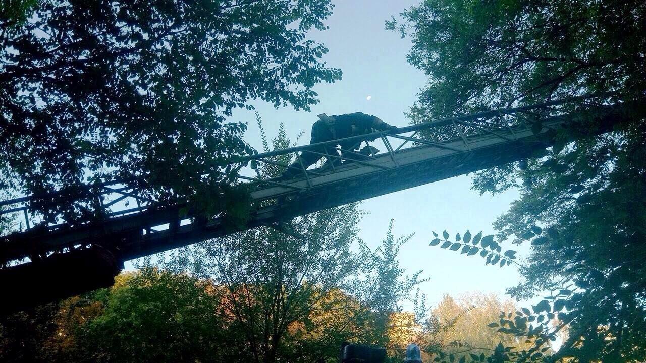 В Днепре пожарные спасли кота, - ФОТО, фото-1