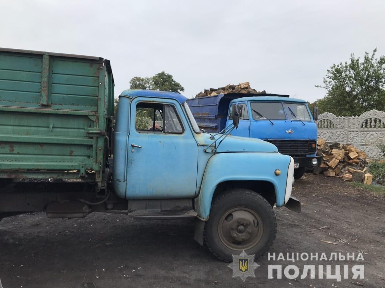 На Днепропетровщине полиция обнаружила очередного дроворуба, - ФОТО, фото-2