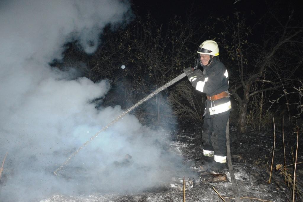 Под Днепром на открытой местности загорелась сухая трава, - ФОТО, ВИДЕО, фото-2