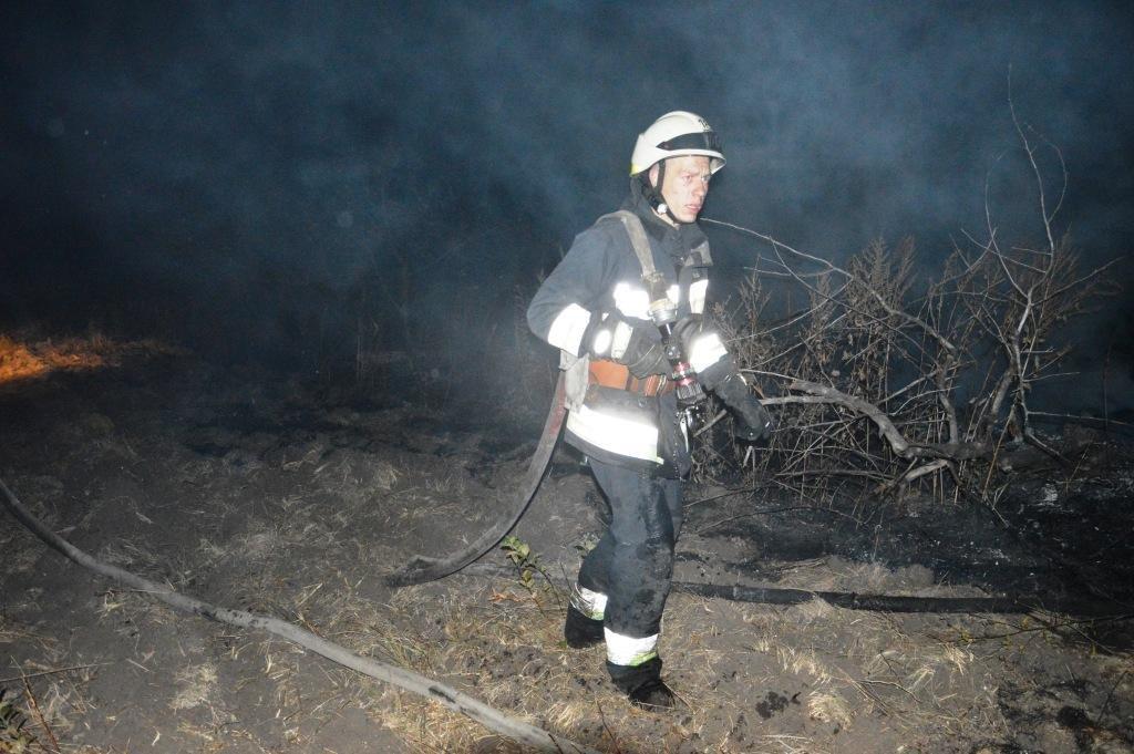 Под Днепром на открытой местности загорелась сухая трава, - ФОТО, ВИДЕО, фото-4