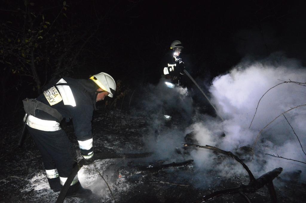 Под Днепром на открытой местности загорелась сухая трава, - ФОТО, ВИДЕО, фото-5