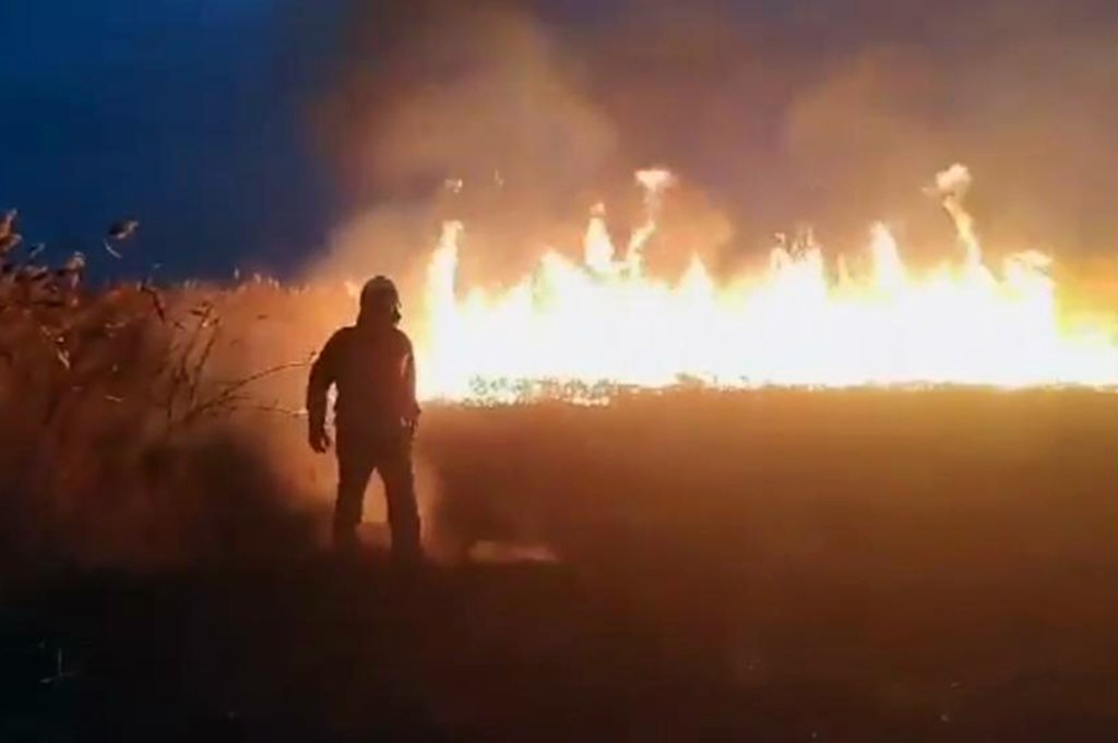 В Днепре возле жилого района горела сухая трава, - ФОТО, фото-3