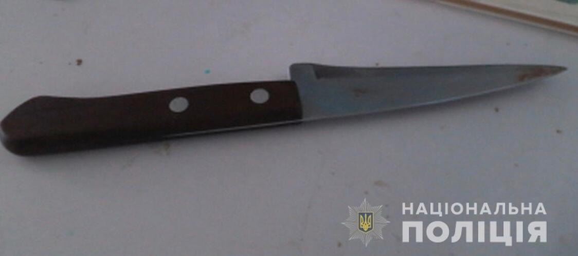 Под Днепром спор двух женщин закончился ножевым ранением в живот, - ФОТО , фото-1