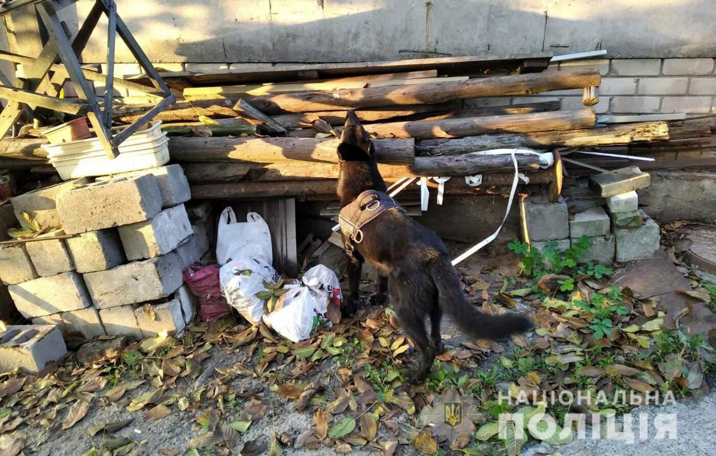 В Днепре служебный пес помог полиции обнаружить оружие и наркотики, - ФОТО, фото-3