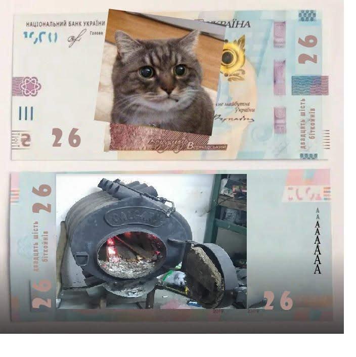 В Украине ввели в оборот 1000 гривен: как распознать подделку и реакция соцсетей, - ФОТО, фото-14