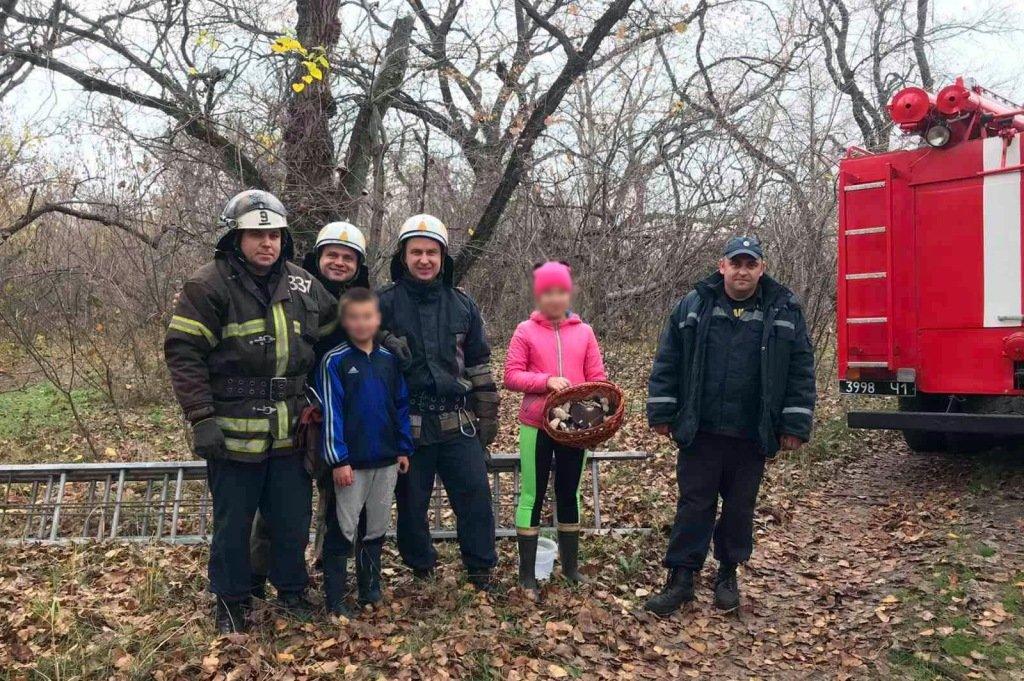На Днепропетровщине спасли маленького грибника с 8-метрового дерева, - ФОТО, фото-2