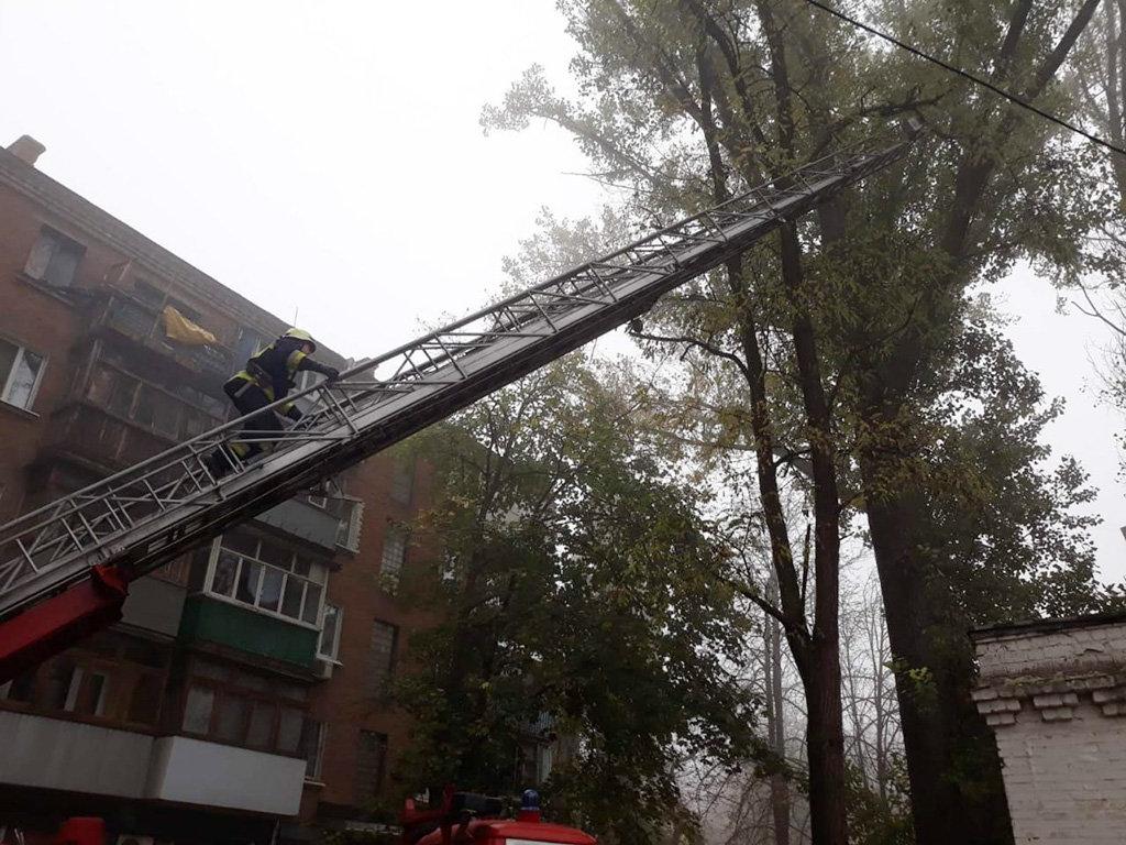 В Днепре восемь пожарных спасали кота, - ФОТО, фото-1