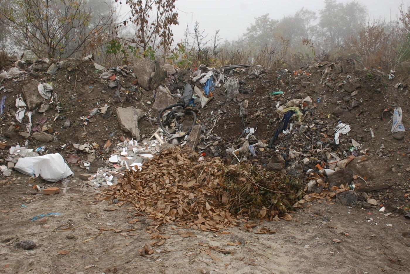 В Днепре коммунальщики борются со стихийными свалками, - ФОТО, фото-3