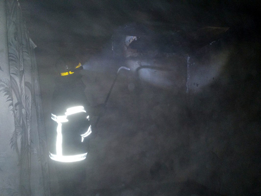 Под Днепром на пожаре пострадала женщина, - ФОТО, фото-2