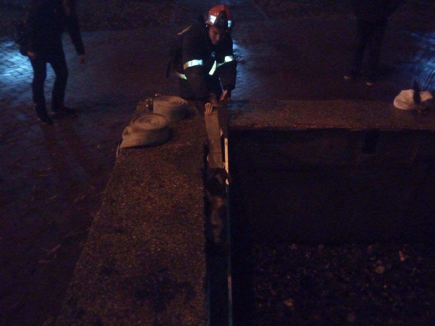 На Днепропетровщине спасатели доставали собаку из ловушки, - ФОТО, фото-1