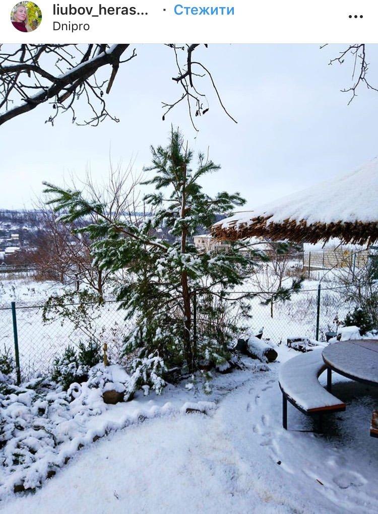 ТОП фотографий первого снега в Днепре от горожан, фото-2