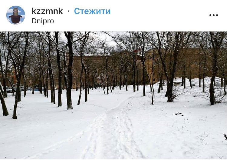 ТОП фотографий первого снега в Днепре от горожан, фото-3