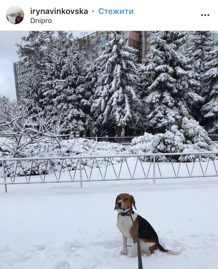 ТОП фотографий первого снега в Днепре от горожан, фото-4