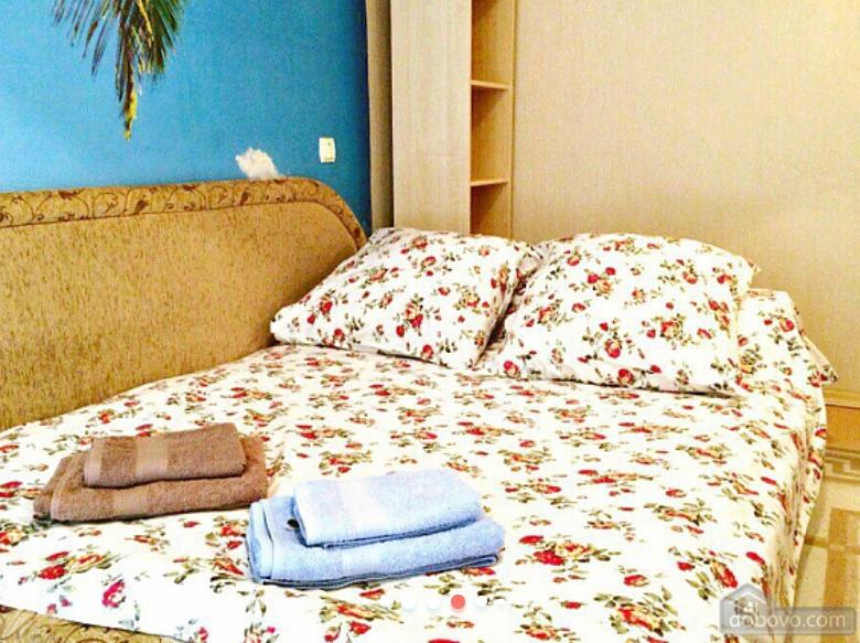Где снять квартиру на Новый Год в Днепре, - ЦЕНЫ И УСЛОВИЯ, фото-15