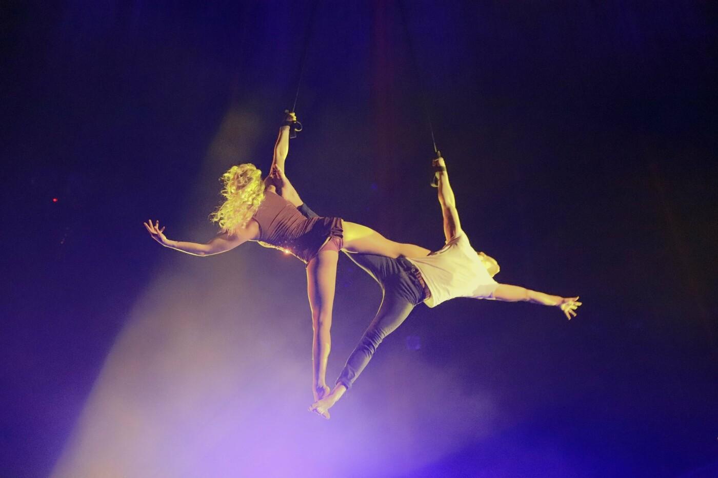 """Днепряне посетили """"Ночь в цирке"""": как это было, - ФОТО, фото-9"""