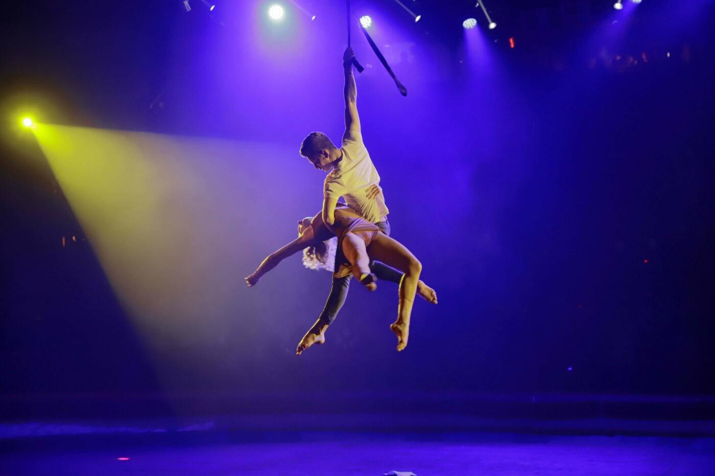 """Днепряне посетили """"Ночь в цирке"""": как это было, - ФОТО, фото-7"""
