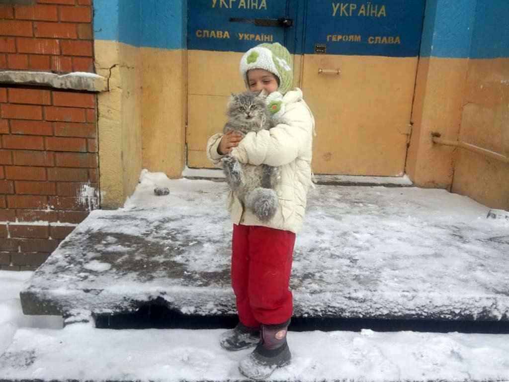 На Днепропетровщине спасатели сняли застрявшего на дереве кота, - ФОТО, ВИДЕО, фото-1