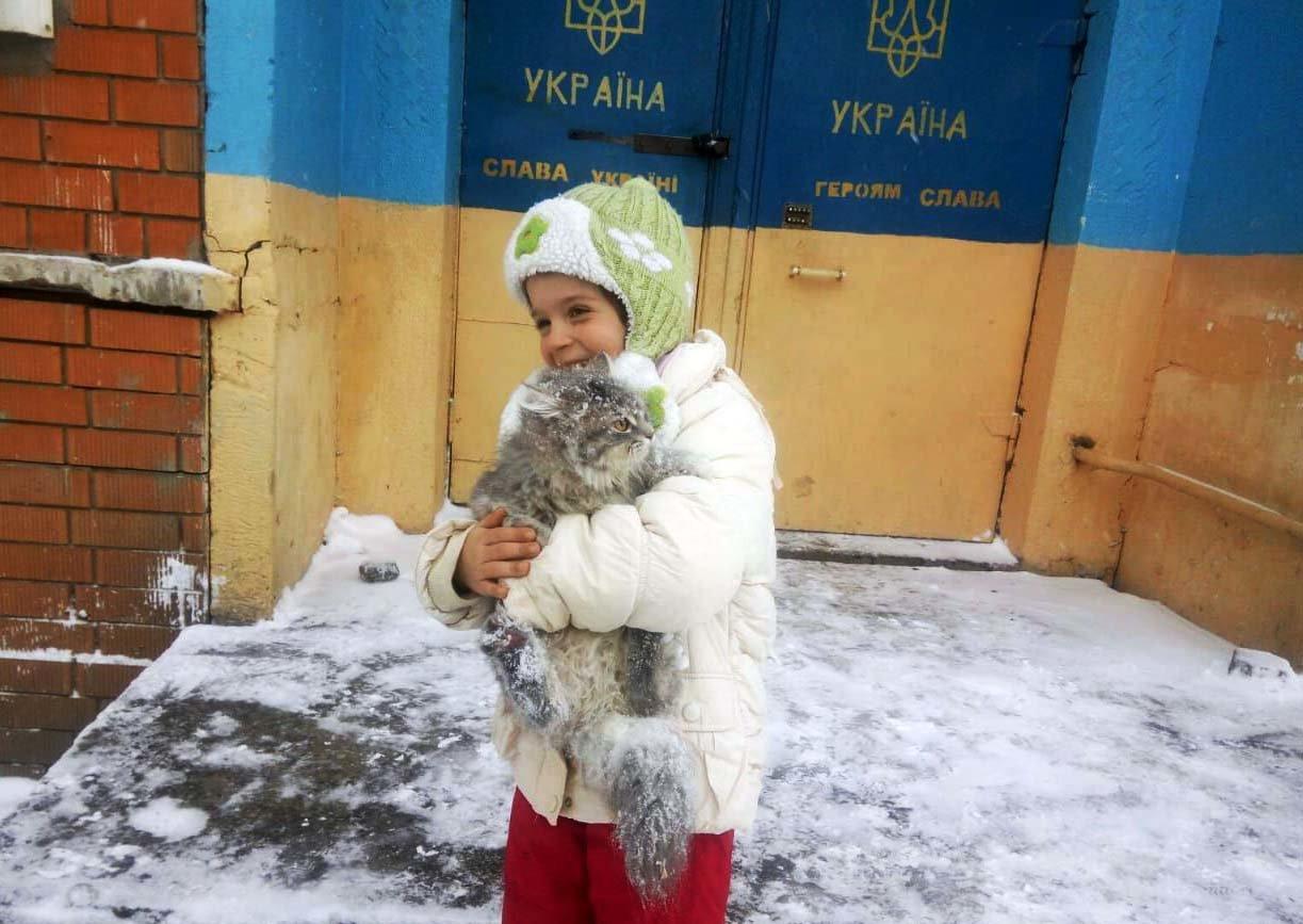 На Днепропетровщине спасатели сняли застрявшего на дереве кота, - ФОТО, ВИДЕО, фото-2