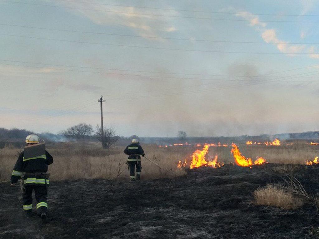 В Днепропетровской области случился пожар на открытой местности, - ФОТО, фото-1