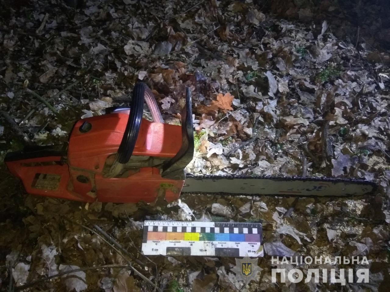 На Днепропетровщине полицейские задержали преступников-лесорубов, - ФОТО, фото-1