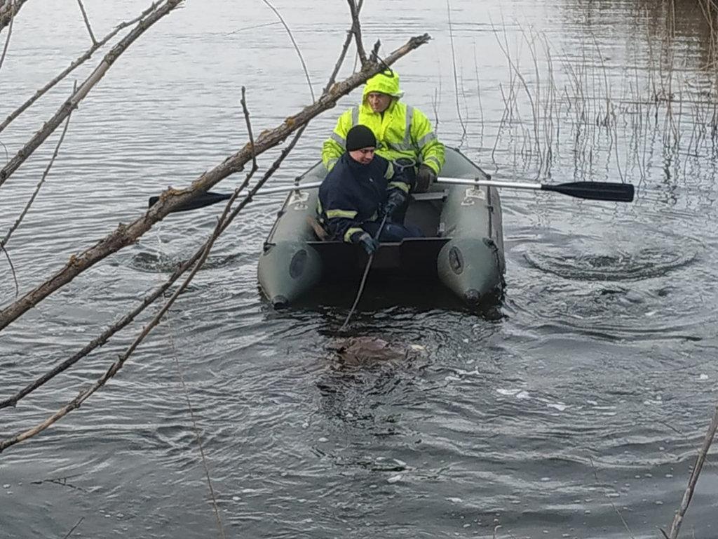 В реке в Днепропетровской области утонул мужчина, - ФОТО, фото-1