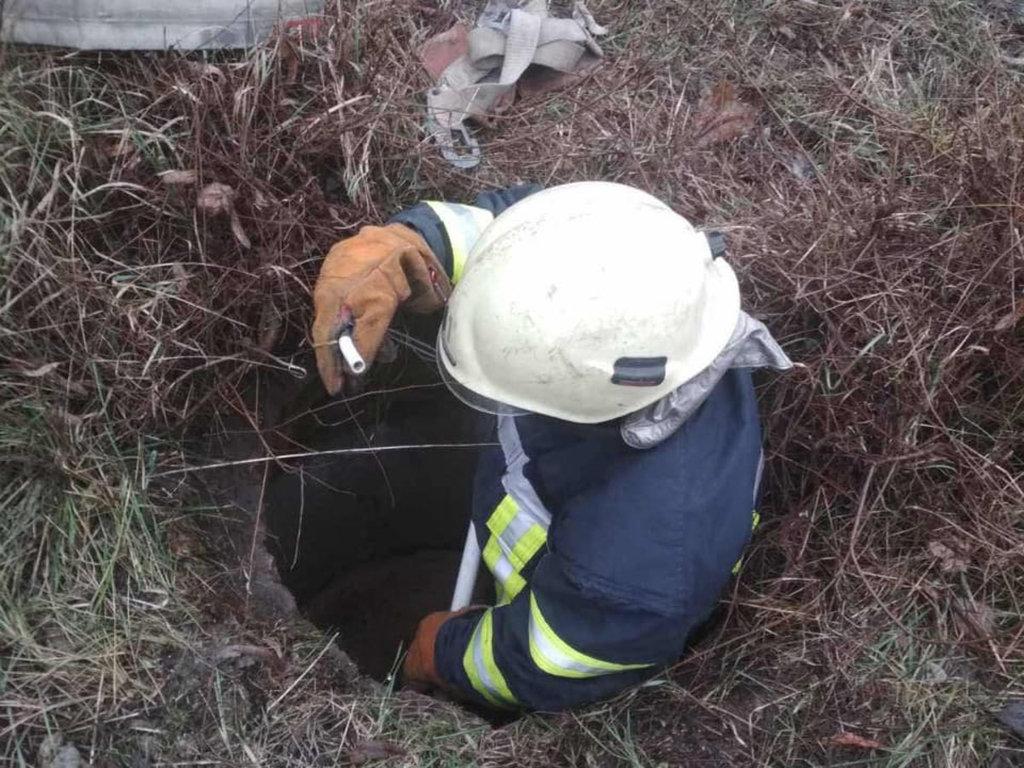 В Днепропетровской области собака упала в колодец и застряла, - ФОТО, фото-1