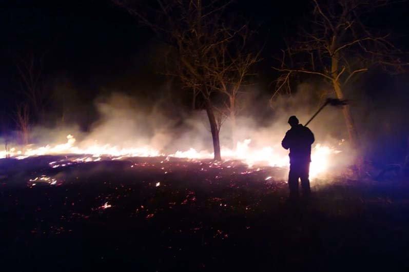 На Днепропетровщине увеличилось количество пожаров в экосистемах из-за ветров и людей, поджигающих траву, - ФОТО , фото-1