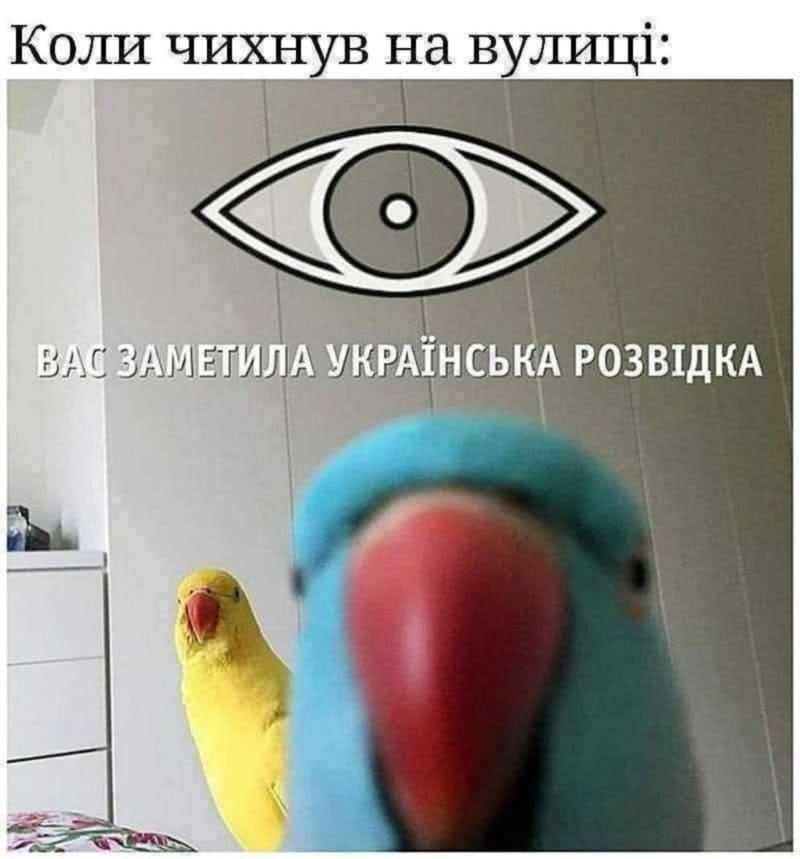 """""""И смех, и слезы"""":  ТОП-25 мемов про коронавирус и карантин от днепрян, фото-2"""