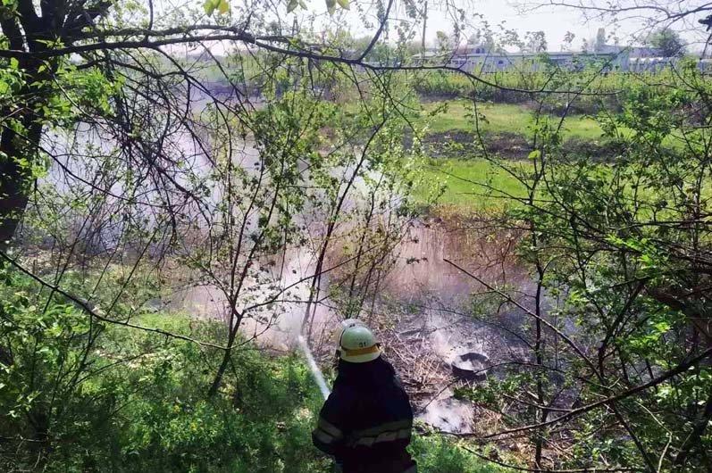 16 пожаров за сутки: спасатели просят жителей Днепропетровщины не сжигать траву, - ФОТО, фото-2
