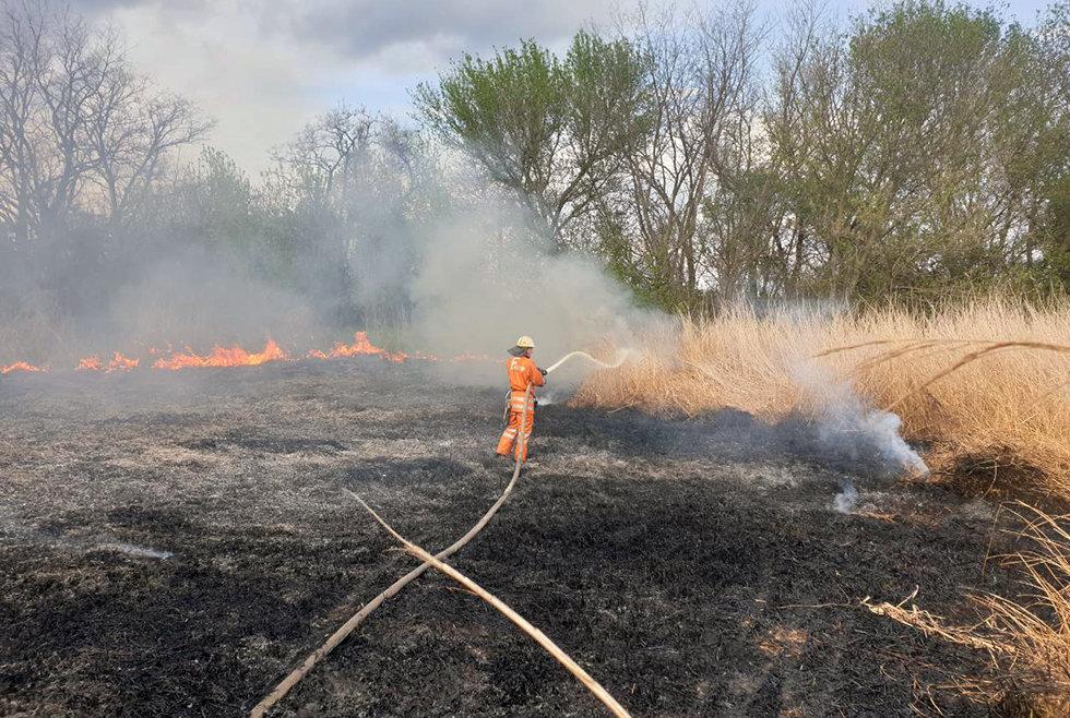 13 пожаров за сутки: спасатели просят жителей Днепропетровщины не сжигать траву, - ФОТО, фото-2