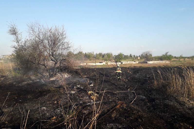 9 пожаров за сутки: спасатели просят жителей Днепропетровщины не сжигать траву, - ФОТО, фото-3