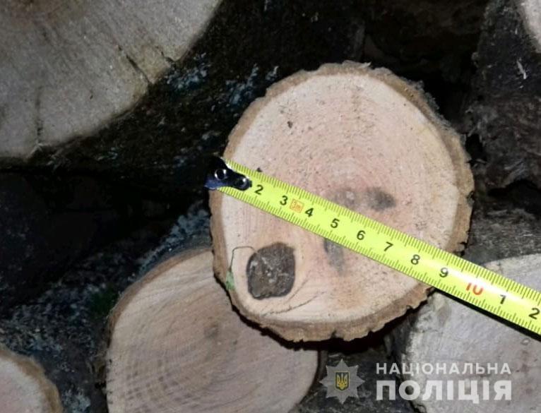 На Днепропетровщине обнаружили автомобиль, забитый незаконносрубленной древесиной, - ФОТО, фото-2