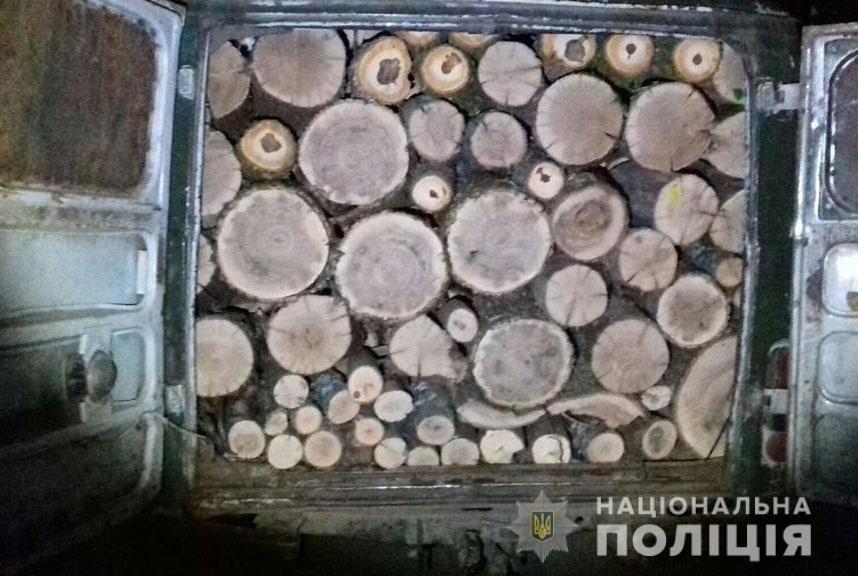 На Днепропетровщине обнаружили автомобиль, забитый незаконносрубленной древесиной, - ФОТО, фото-1