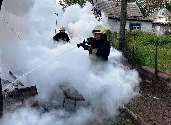 В Днепре на территории частного домовладения произошел пожар, - ФОТО, фото-3