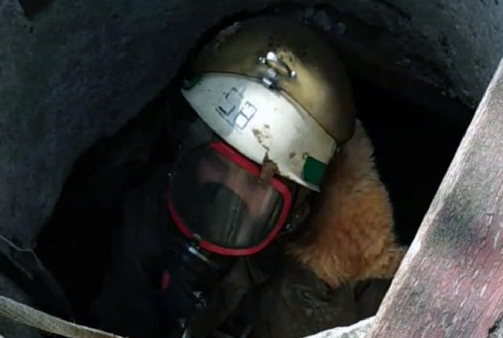 Под Днепром спасатели доставали кошку из колодца, - ФОТО, фото-1